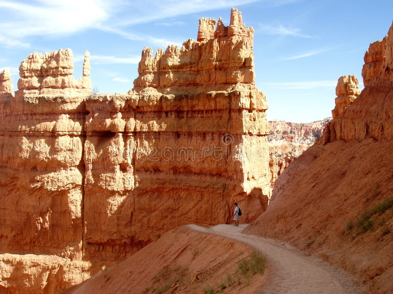каньон bryce стоковые фото
