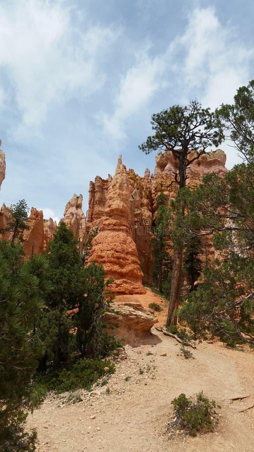 Каньон Bryce стоковое изображение rf