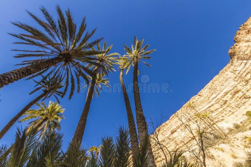 Каньон Ghoufi стоковые фотографии rf