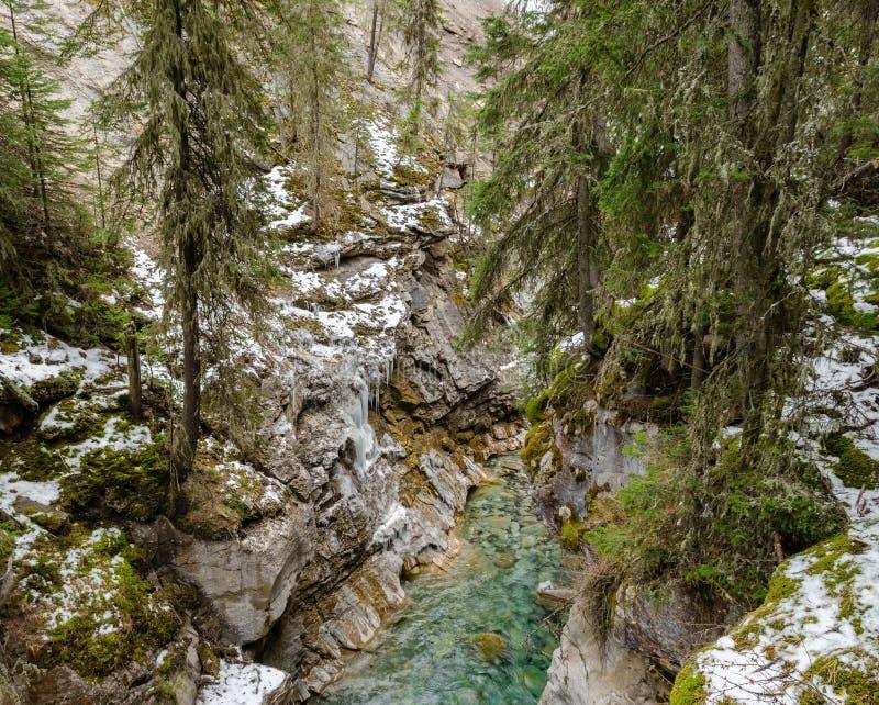 Каньон Johnston в национальном парке Banff, Альберте, Канаде стоковое изображение rf