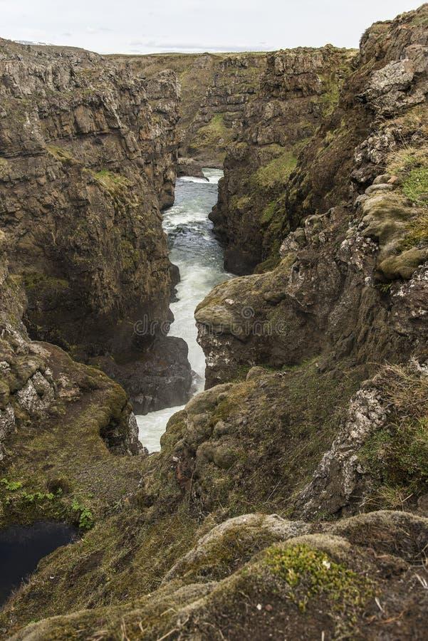 Каньон Kolugljufur стоковое фото rf