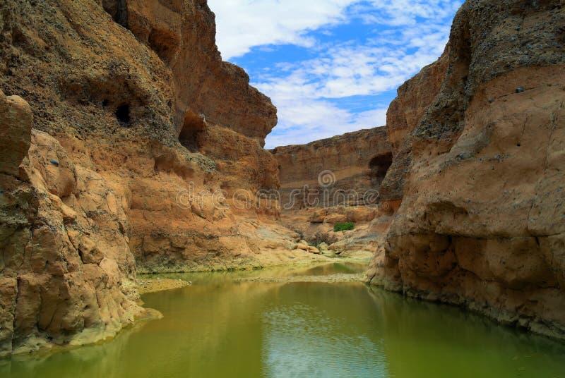 Каньон Sesriem реки Tsauchab, Sossusvley Намибии стоковая фотография rf