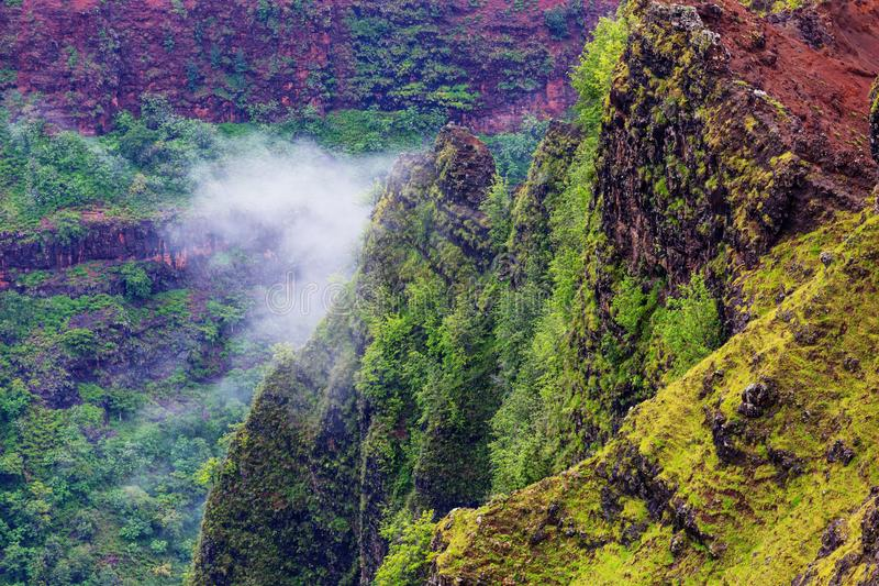 Каньон Waimea стоковая фотография