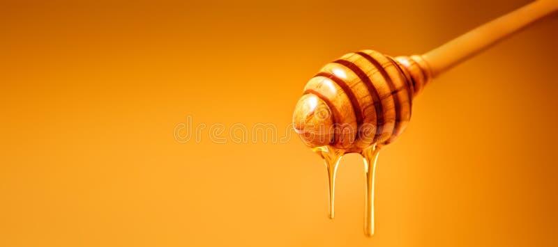 Капание меда от деревянного ковша меда над желтой предпосылкой стоковые фотографии rf