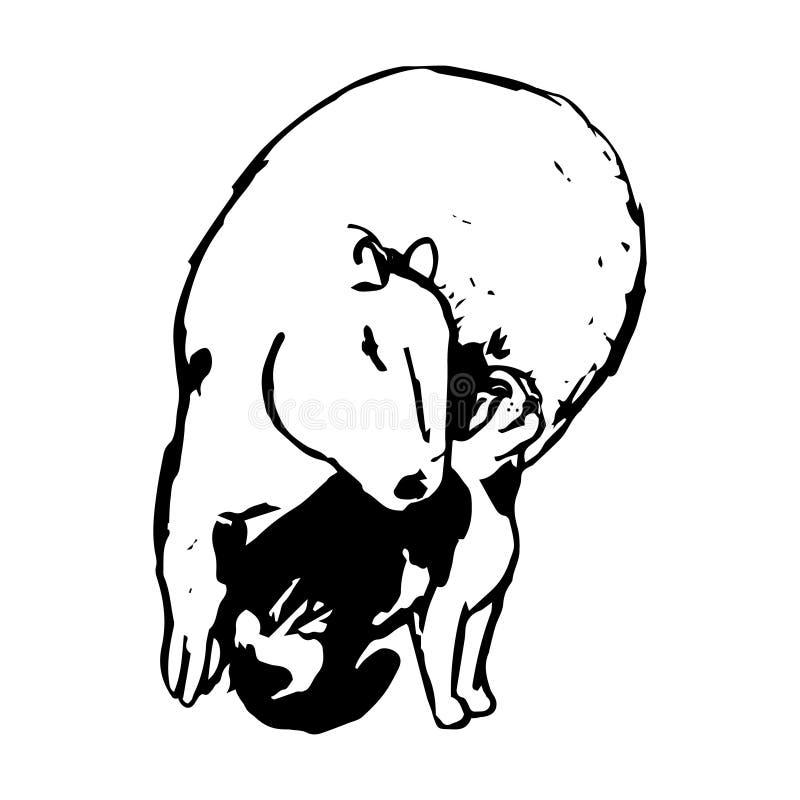 Капибара и кот иллюстрация вектора