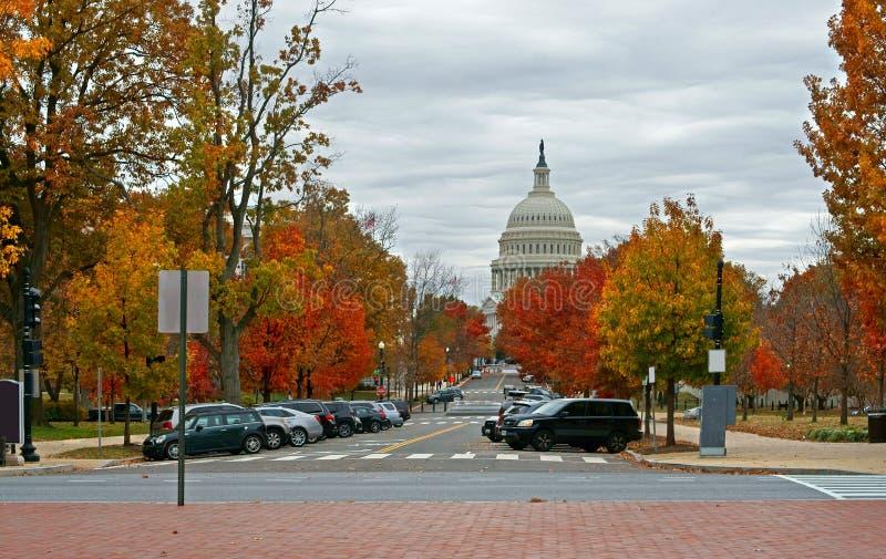 Капитолий Соединенных Штатов и верхний парк сената Вашингтон, DC стоковое изображение