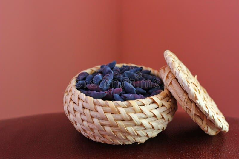 каприфолий ягоды стоковые фото