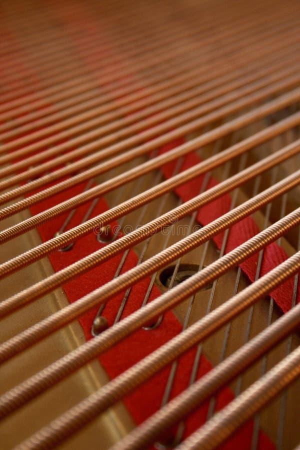 Капюшон и бас-струны стоковые фотографии rf