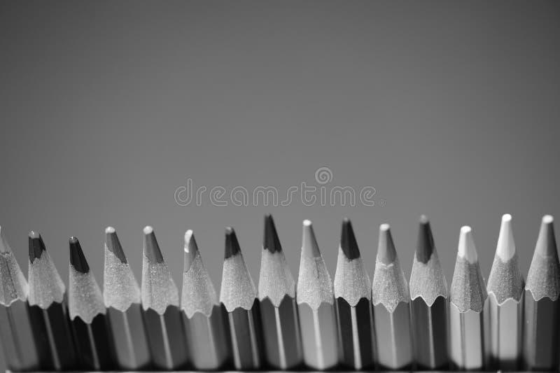 карандаши группы пестротканые черная белизна стоковое фото