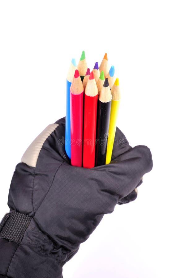 карандаш цветов стоковые изображения rf
