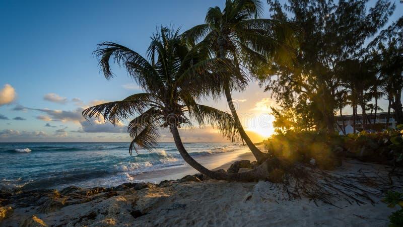 Карибская мечта захода солнца стоковые изображения