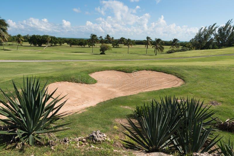 Карибские поля гольфа в тропиках стоковое изображение