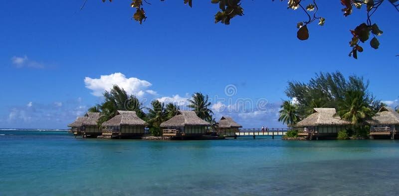 карибские праздники стоковое фото rf