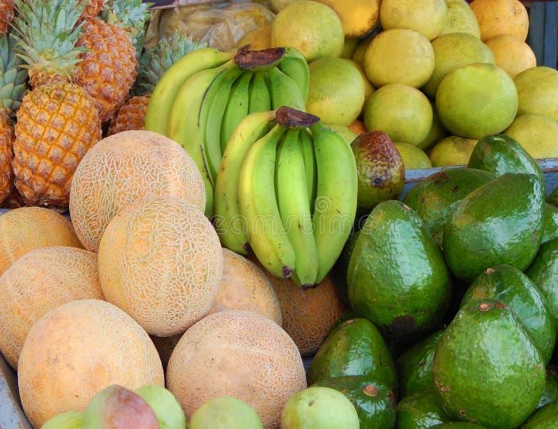 Карибский коктеиль плодоовощ стоковое фото rf