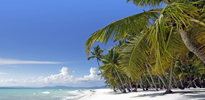 Download Карибское лето стоковое изображение. изображение насчитывающей солнце - 41658357