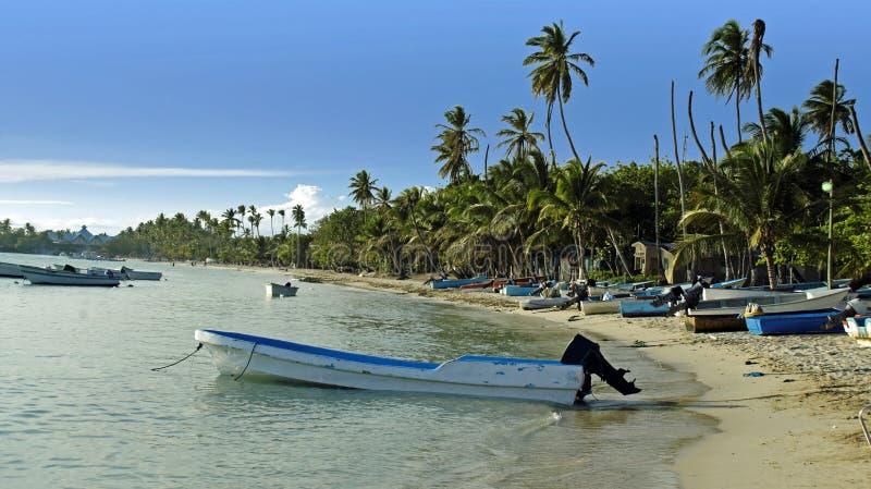 Download Карибское лето стоковое фото. изображение насчитывающей туризм - 41658400