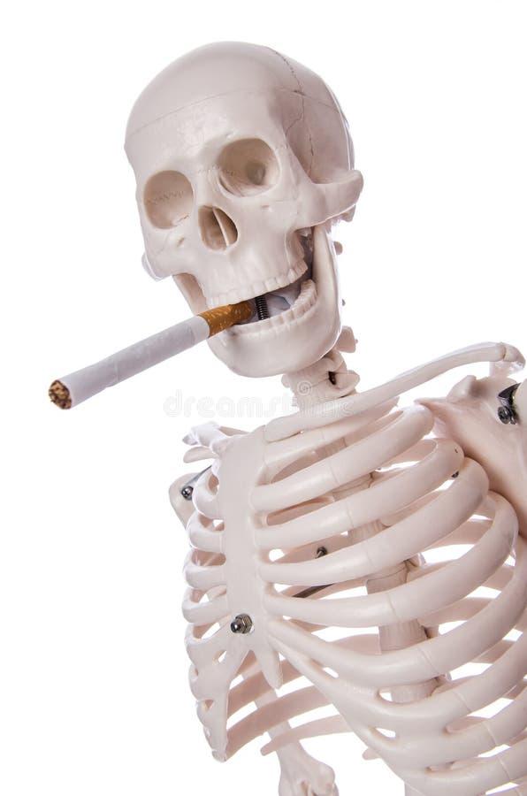 Каркасная куря сигарета стоковое фото