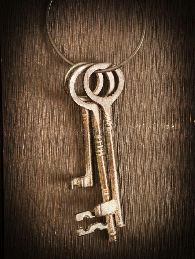 Каркасные ключи стоковая фотография rf