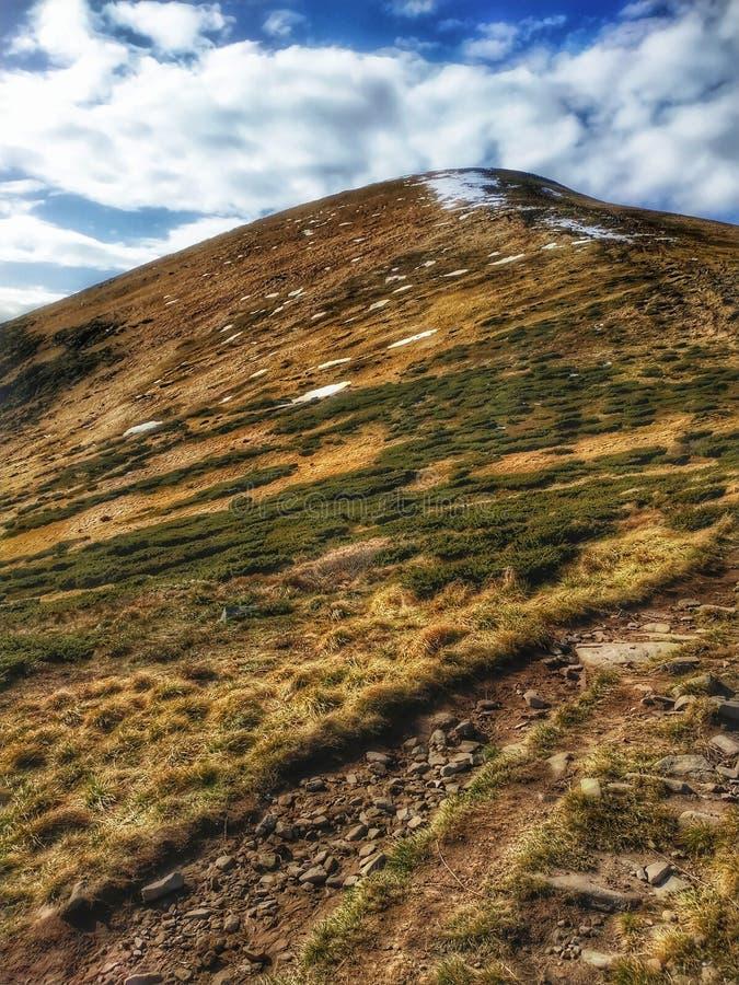 Карпатская гора Говерла стоковые фотографии rf