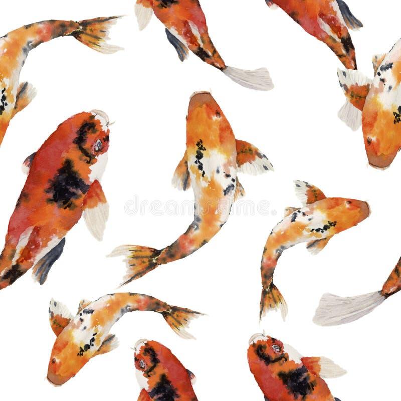 Карпа радуги акварели картина восточного безшовная Koi удит орнамент на белой предпосылке Подводная иллюстрация для d бесплатная иллюстрация