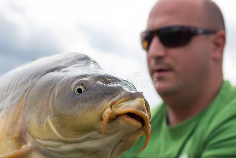 Карп и рыболов, трофей рыбной ловли карпа стоковые фотографии rf