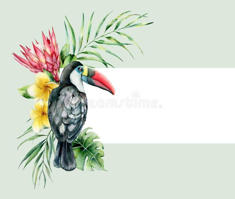 Карта акварели с тропическим букетом toucan и цветков Рука покрасила птицу, protea и plumeria изолированную на зеленом цвете стоковые фотографии rf