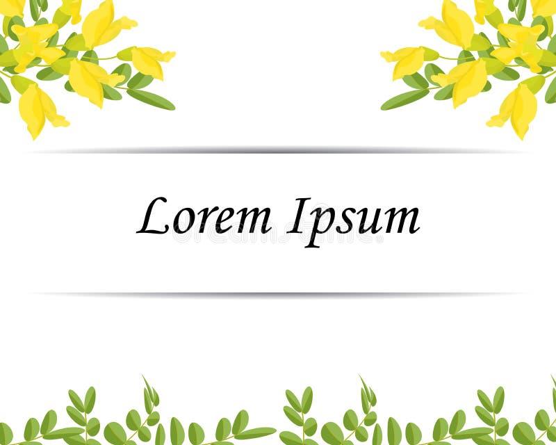 Карта приглашения флористического дизайна, зеленые листья Caragana, небольшие зацветая желтые цветки иллюстрация вектора