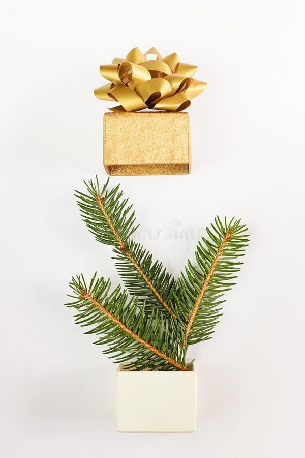 Карта рождества и Нового Года Ветви ели в подарочной коробке над белой предпосылкой стоковое фото