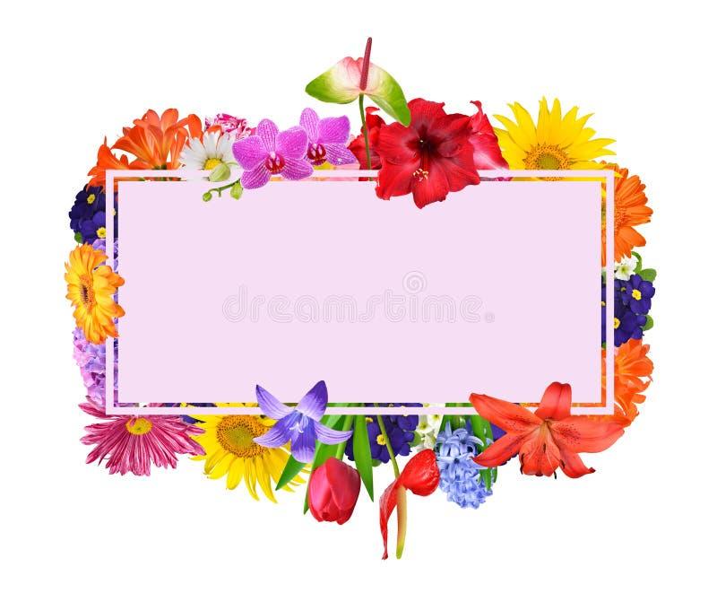 Карта текста обрамленная с красочными цветками весны иллюстрация вектора