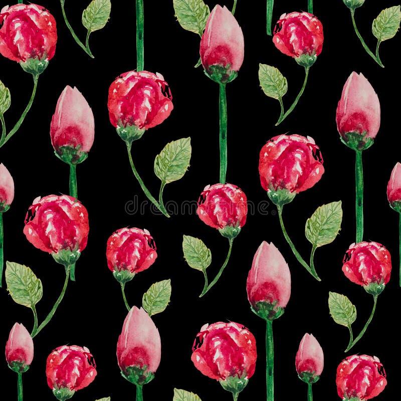 Картина акварели безшовная роз чая иллюстрация штока