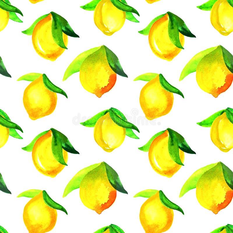 Картина акварели безшовная с лимонами Рука покрасила орнамент цитруса на белой предпосылке для дизайна, ткани или печати стоковое изображение