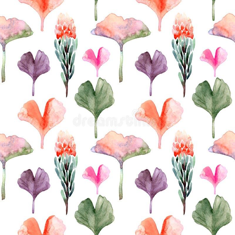 Картина акварели безшовная с листьями biloba Gingko или гинкго и пастель protea на белой предпосылке стоковое изображение