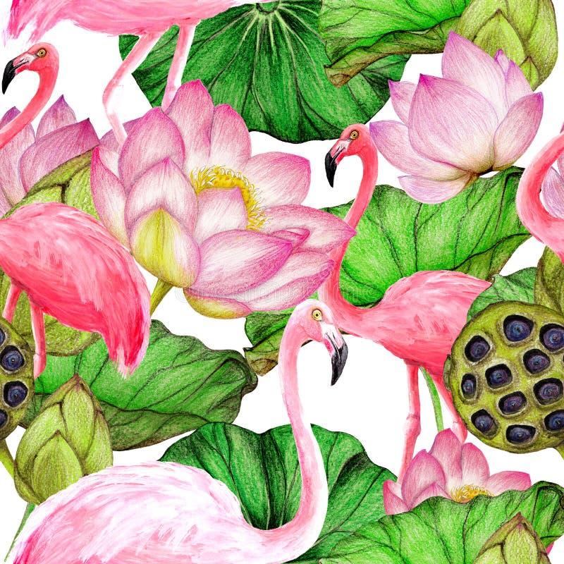 Картина акварели безшовная фламинго иллюстрация вектора