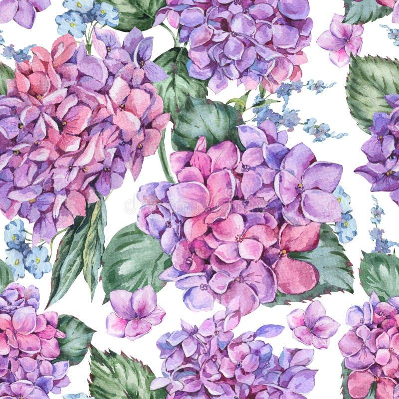 Картина акварели лета винтажная флористическая безшовная с зацветая гортензией, иллюстрация штока