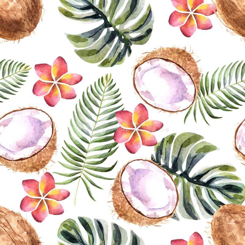 Картина акварели тропическая безшовная с кокосом на белой предпосылке иллюстрация вектора