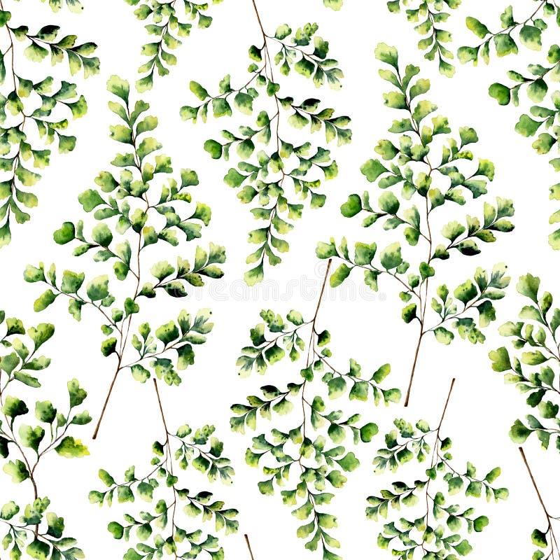 Картина акварели безшовная с листьями папоротника maidenhair Покрашенный рукой орнамент папоротника Флористическая иллюстрация из иллюстрация вектора