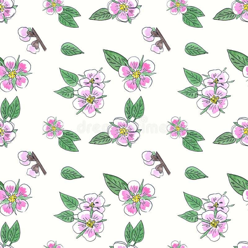 Картина акварели безшовная с цветками и листьями вишни иллюстрация штока
