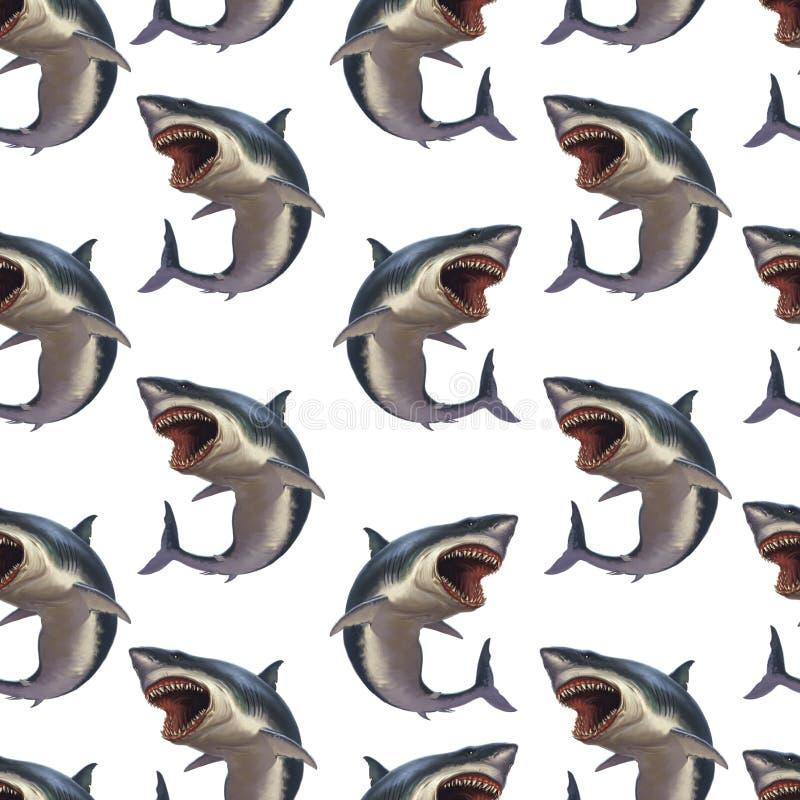 Картина акулы на белизне Акула на белой предпосылке иллюстрация вектора