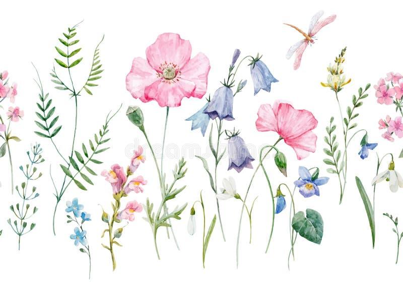 Картина вектора акварели флористическая иллюстрация вектора