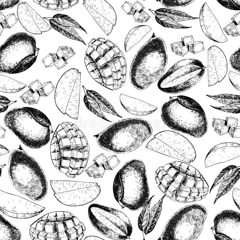 Картина вектора безшовная изолированного манго плодоовощи нарисованные рукой покрашенные экзотические Выгравированное искусство бесплатная иллюстрация