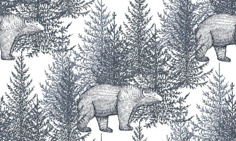 Картина вектора безшовная с медведями и деревьями нарисованными рукой иллюстрация вектора