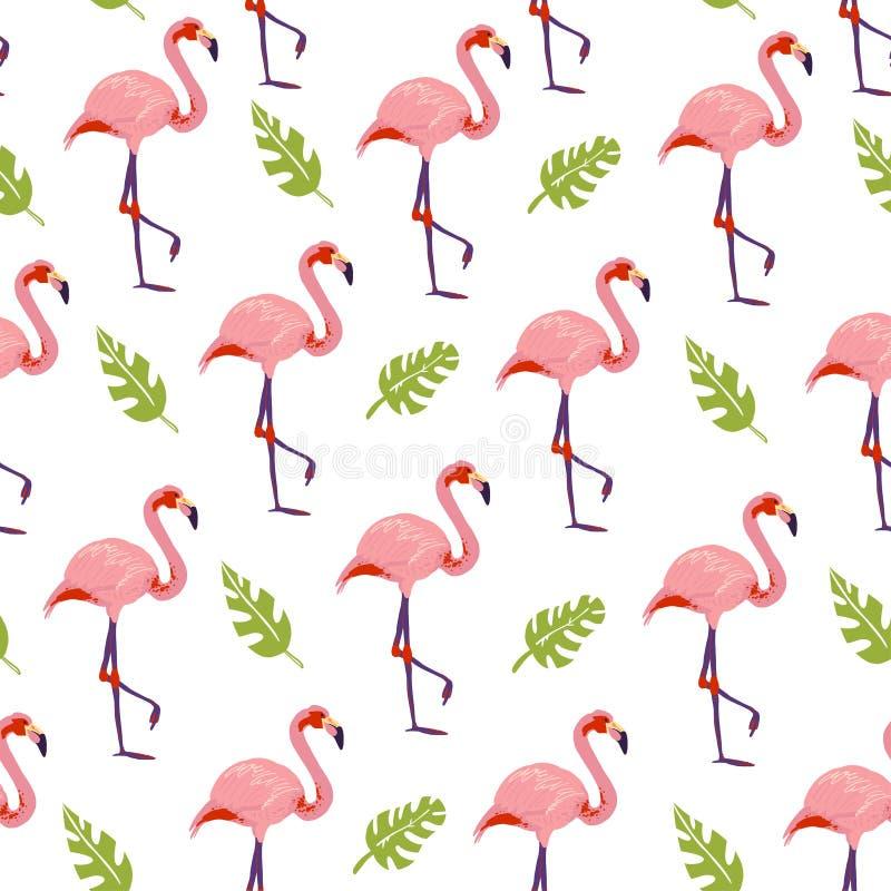 Картина вектора плоская тропическая безшовная с птицами фламинго заводов monstera джунглей руки вычерченными изолированными на бе иллюстрация вектора