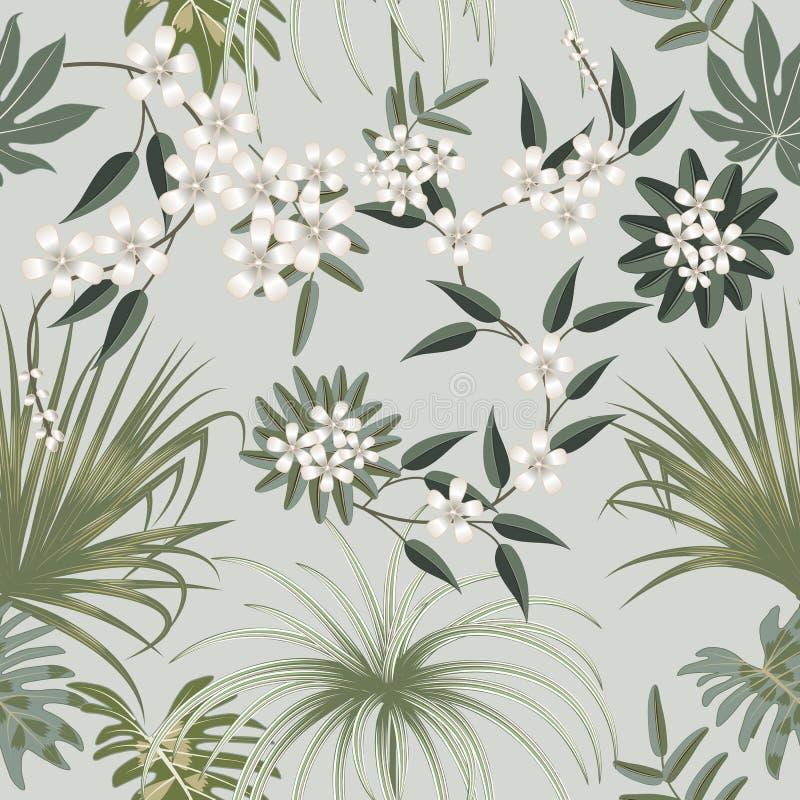 Картина вектора тропическая безшовная в прованских зеленых цветах Дизайн ботаники Смогите быть использовано для шаблона брошюры,  бесплатная иллюстрация
