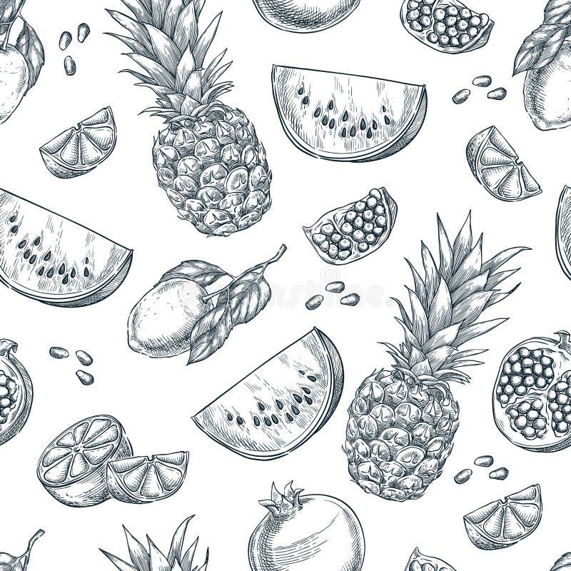 Картина вектора тропических плодоовощей безшовная Сделайте эскиз к иллюстрации нарисованной рукой ананаса, лимона, арбуза, гранат иллюстрация штока