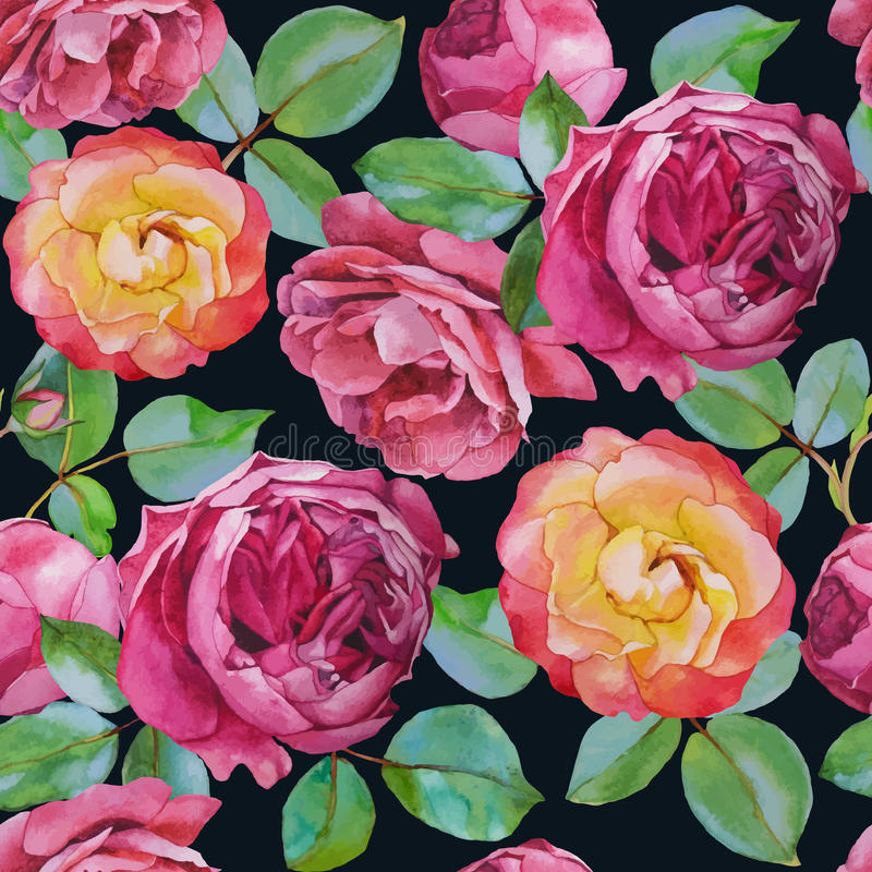 Картина вектора флористическая безшовная с розами акварели бесплатная иллюстрация