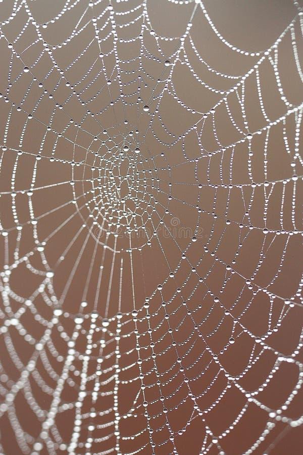 Картина вектора Jrange для helloween стоковые фотографии rf