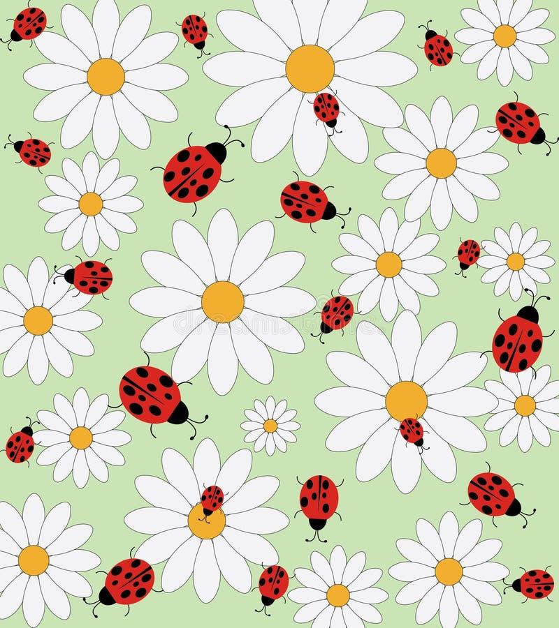 Картина вектора Ladybird и маргаритки иллюстрация вектора