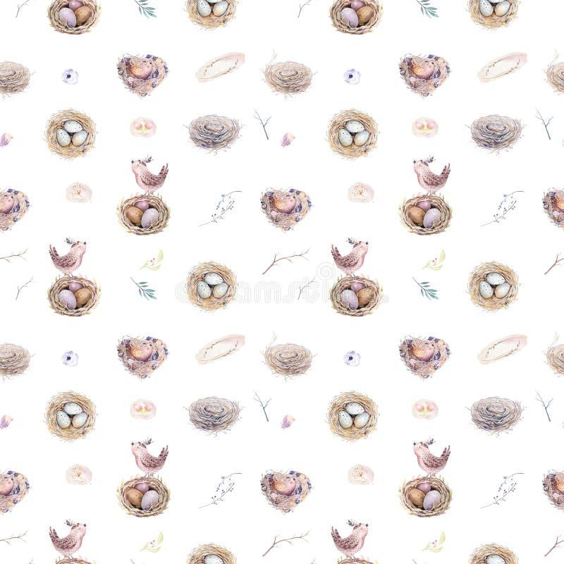 Картина весны акварели деревенская с гнездом, птицами, ветвью, хворостинами дерева и пером Птица Watercolour безшовной нарисованн иллюстрация вектора
