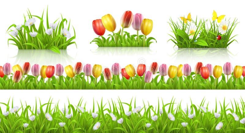 Картина весны безшовные, трава и комплект вектора цветков 3d иллюстрация штока