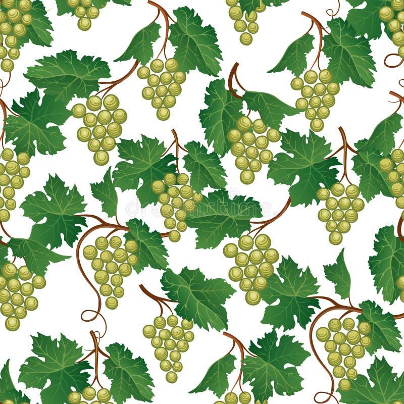 картина виноградины безшовная Предпосылка еды плодоовощ двора вина естественная иллюстрация вектора